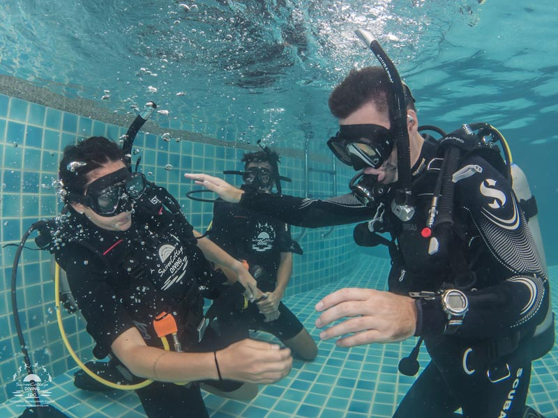 Working Divemaster Diving Instructor PADI Open Water Swimming Pool