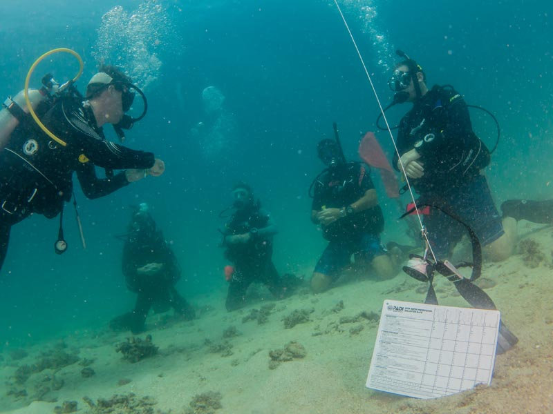 PADI Teaching Materials IDC Staff Instructor